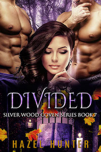 Divided (Book 7)
