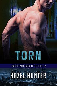Torn (Book 2)